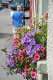Side Walk. Flowers overflowing from a window box royalty free stock photography