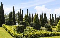 Side Walk Garden. Many shape of green bush in side walk garden Stock Images