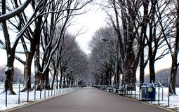 Side walk of national mall in Washington, D.C. A cold snowy day in the morning but just amazing stock photos