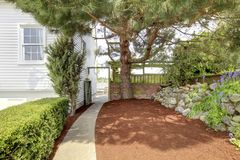 Side yard with walk way and large tree near. Royalty Free Stock Photography