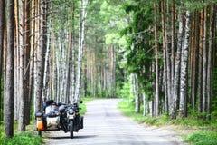 Sidecar в лесе Стоковые Фотографии RF
