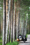 Sidecar in a forest Stock Images