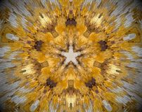 5 sided star abstract extrude mandala. Small square blocs extruded mandala with abstract five sided star shape. White, brown and yellow Stock Photography