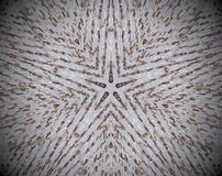 5 sided star shape extruded mandala. Abstract small squares extruded mandala. Five sided star shape. Brown and white Royalty Free Stock Images
