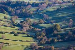 Sidelit树木繁茂的谷在黎明 免版税库存照片
