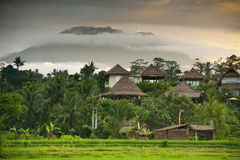 Sidemen, Bali Sunrise. The volcano Gunung Agung can be seen in the background during this magnificent sunrise over the beautiful rice fields Royalty Free Stock Photography