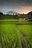 Sidemen, Bali wschód słońca. Zdjęcia Royalty Free