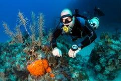 sidemount的轻潜水员在礁石 免版税库存照片