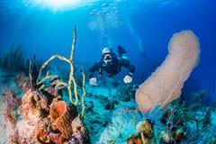 sidemount的轻潜水员在礁石 免版税库存图片
