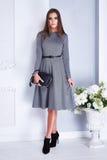 Siden- klänning för härligt sexigt mode för brunettkvinnakläder elegant ho arkivfoton