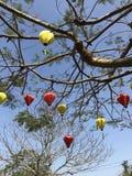 Siden- lyktor i ett träd med blå himmel arkivfoton