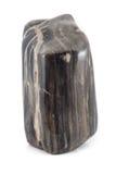 Sideview antico di legno petrificato del nero del pezzo Fotografia Stock