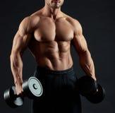 Sideview cosechado del torso masculino atractivo muscular del ` s foto de archivo