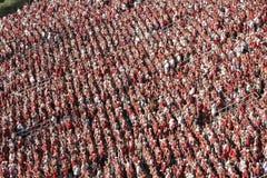 Sideview della folla di gioco del calcio Immagini Stock