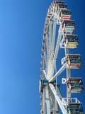 Sideview della rotella gigante Immagini Stock