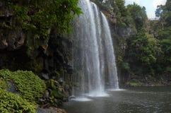 Sideview des magischen Wasserfalls in Whangarei stockbilder