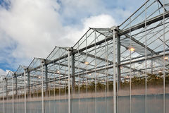 Sideview of a greenhouse in The Netherlands Royalty Free Stock Photos