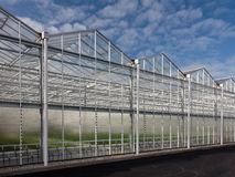 Sideview of a newly build greenhouse Stock Photography