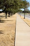 Sidewalk. Long tree-lined sidewalk that seems to go forever Royalty Free Stock Photos