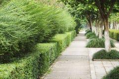 sidewalk Imagens de Stock