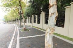 sidewalk imagens de stock royalty free