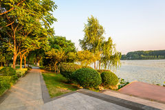 The sidewalk along the lake royalty free stock images