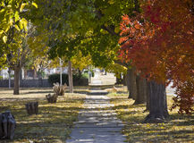 Sidewalk in Autumn royalty free stock photo
