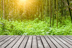 Sidewalk in the bamboo forest Royalty Free Stock Image
