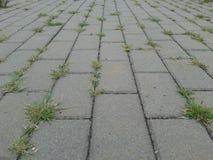 Sidewalk blocks Stock Photography