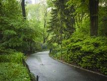 Sidewalk in Central Park, New York City Stock Photos