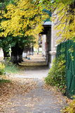 Sidewalk in a city in autumn Royalty Free Stock Photos
