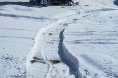 Sidewalk cleaned with snow blow machine Stock Photos