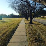Through the sidewalk. On a cold day through the sidewalk, early morning Royalty Free Stock Images