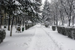 Sidewalk covered with snow Royalty Free Stock Photo