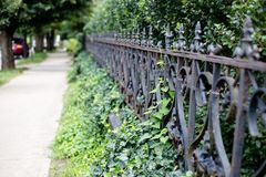 Sidewalk and fence in the summer royalty free stock photos