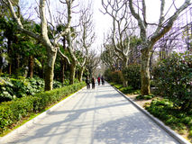 Sidewalk of Fuxing Park Royalty Free Stock Photo
