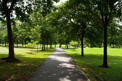 Sidewalk In Park Stock Photography