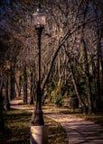 Sidewalk & Lamp post in Memorial Park Royalty Free Stock Photos