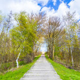 Sidewalk on a levee at the Baltic Sea Stock Photos