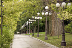 Sidewalk lined with trees and lamps. Lamps along a walkway in Old Quebec City Stock Images