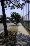 Sidewalk in Los Angeles Stock Image