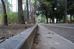 Sidewalk of a park path. Sidewalk in a park with leaves and trees Royalty Free Stock Photo