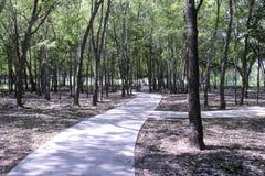 Sidewalk path through trees Stock Photo