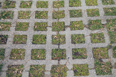 Sidewalk Pattern - Cement Squares and Grass Stock Photo