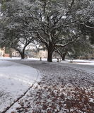 Sidewalk Snow Scene Stock Images