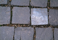 Sidewalk of square tiles royalty free stock photo
