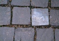 Sidewalk of square tiles Royalty Free Stock Photo