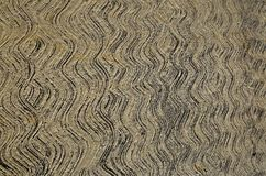 Sidewalk texture from sweeping wet concrete Royalty Free Stock Photos