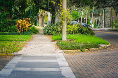 Sidewalk in Thornton Park, Orlando. Sidewalk and road crossing in the historic residential Thornton Park district of downtown Orlando Royalty Free Stock Images