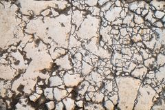 Sidewalk tile, the texture of the sidewalk on the Temple Mount in Jerusalem. The times of the first temple Islam, Judaism Stock Photos